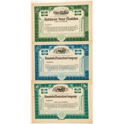 Honolulu Plantation Company Stock Certificates  (101552)