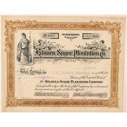 Kilauea Sugar Plantation Company Stock Certificate  (101558)