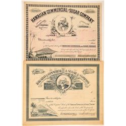 Hawaiian Commercial & Sugar Co. Stock Certificate Pair  (101529)