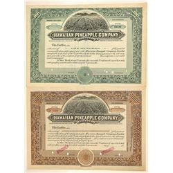 Hawaiian Pineapple Company, Ltd. Stock Certificate Pair  (101548)