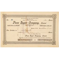 Puna Sugar Company, Ltd. Stock Certificate  (101557)