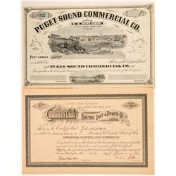 Two Different Non-Mining Washington Stock Certificates  (100971)