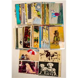 Dog Postcard Collection  (102697)