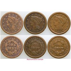 Large Cent Collection  (103096)