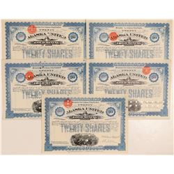 Alaska United Gold Mining Company Blue Stock group of five  (101439)