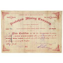 Bradshaw Mining Company Stock Certificate  (100888)