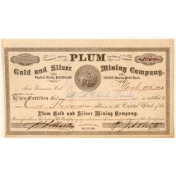Plum Gold & Silver Mining Co. Stock Certificate  (100900)
