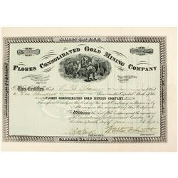 Flores Consolidated Gold Mining Company Stock  (81656)
