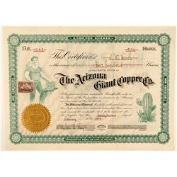 Arizona Giant Copper Mining Co. Stock  (91701)