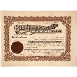 Coice, Rare Big Stick Gold Mining Company Stock  (59585)