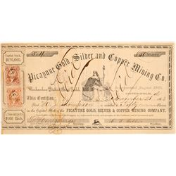 Picayune Gold, Silver & Copper Mining Co. Stock Certificate  (100850)