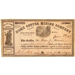 Home Copper Mining Company Stock Certificate  (101496)