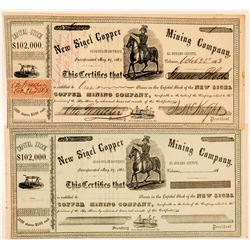 New Sigel Copper Mining Company Stock Certificate  (100766)
