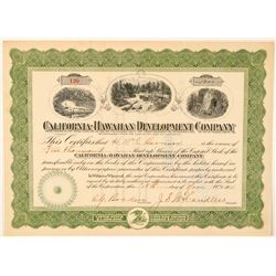 California-Hawaiian Development Co. Stock Certificate  (101545)