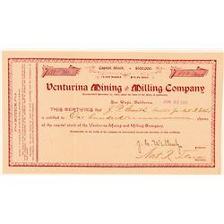 Venturina Mining & Milling Company Stock Certificate  (100838)