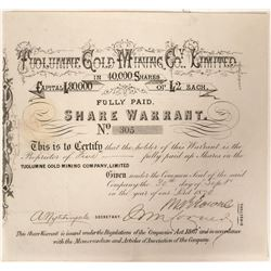 Tuolumne Gold Mining Warrant  (90992)