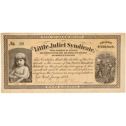Little Juliet Syndicate  (104906)