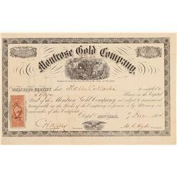 Montrose Gold Co.  (104705)