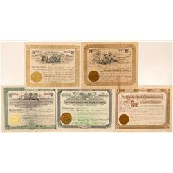 Five Different Cripple Creek Mining Stock Certificates  (91638)