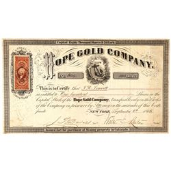 Hope Gold Company Stock Certificate  (91769)