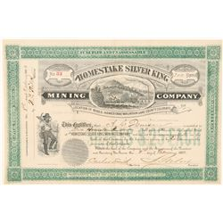 Homestake Silver King Mining Co. Stock Certificate  (91736)
