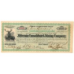 Hibernia Consolidated Mining Co. Stock Certificate  (91744)