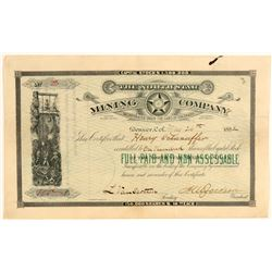 North Star Mining Company Stock Certificate  (91801)