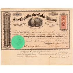 Copalinshe Gold Mining Company of Colorado  (104696)