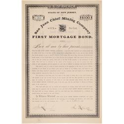San Juan Chief Mortgage Bond  (101466)