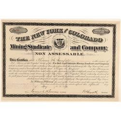New York & Colorado Mining Syndicate & Co. Stock Certificate  (91802)
