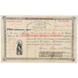 San Ricardo Mining Company Stock Certificate  (100894)