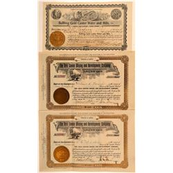 """Gold Center"" Bullfrog Mining Stock Certificates  (101634)"