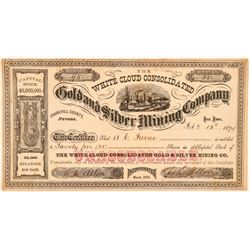 White Cloud Cons. Gold & Silver Mining Co. Stock Certificate  (100964)