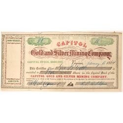 Bright and Colorful Capitol Gold and Silver MIning Company Stock  (91892)