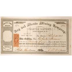 Rey del Monte Mining Company Stock  (91897)