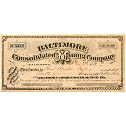 Baltimore Consolidated Mining Company Stock Certificate  (100922)