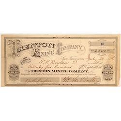 Trenton Mining Company Stock Certificate  (102173)