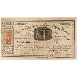 Platt & King Gold and Silver Mining Company Stock  (91925)