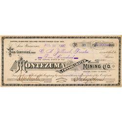 Montezuma Consolidated Mining Co. Stock Certificate  (100925)