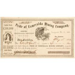 Pride of Esmeralda Mining Company Stock  (82029)