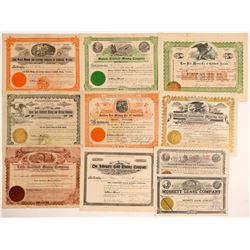 Ten Different Goldfield Mining Stock Certificates  (102202)