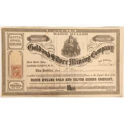 Marie Muller Gold and Silver Mining Company Stock  (91941)