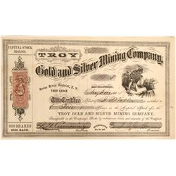 Troy Gold and Silver Minign Company Stock  (91934)