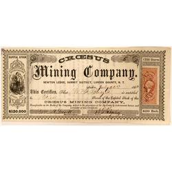 Croesus Mining Company  (91905)