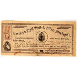 Northern Light Gold & Silver Mining Company Stock  (91903)