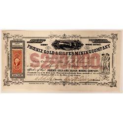 Phoenix Gold & Silver Mining Company Stock  (91906)
