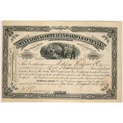 Santa Rita Copper and Iron Company Stock  (90538)