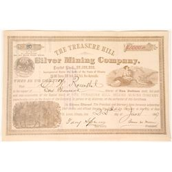 Treasure Hill Silver MIning Company Stock  (90541)