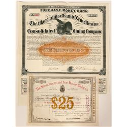 Massachusetts and New Mexico Mining Company Stock and Bond  (91883)