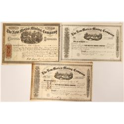 New Mexico Mining Company Stock Collection  (90531)